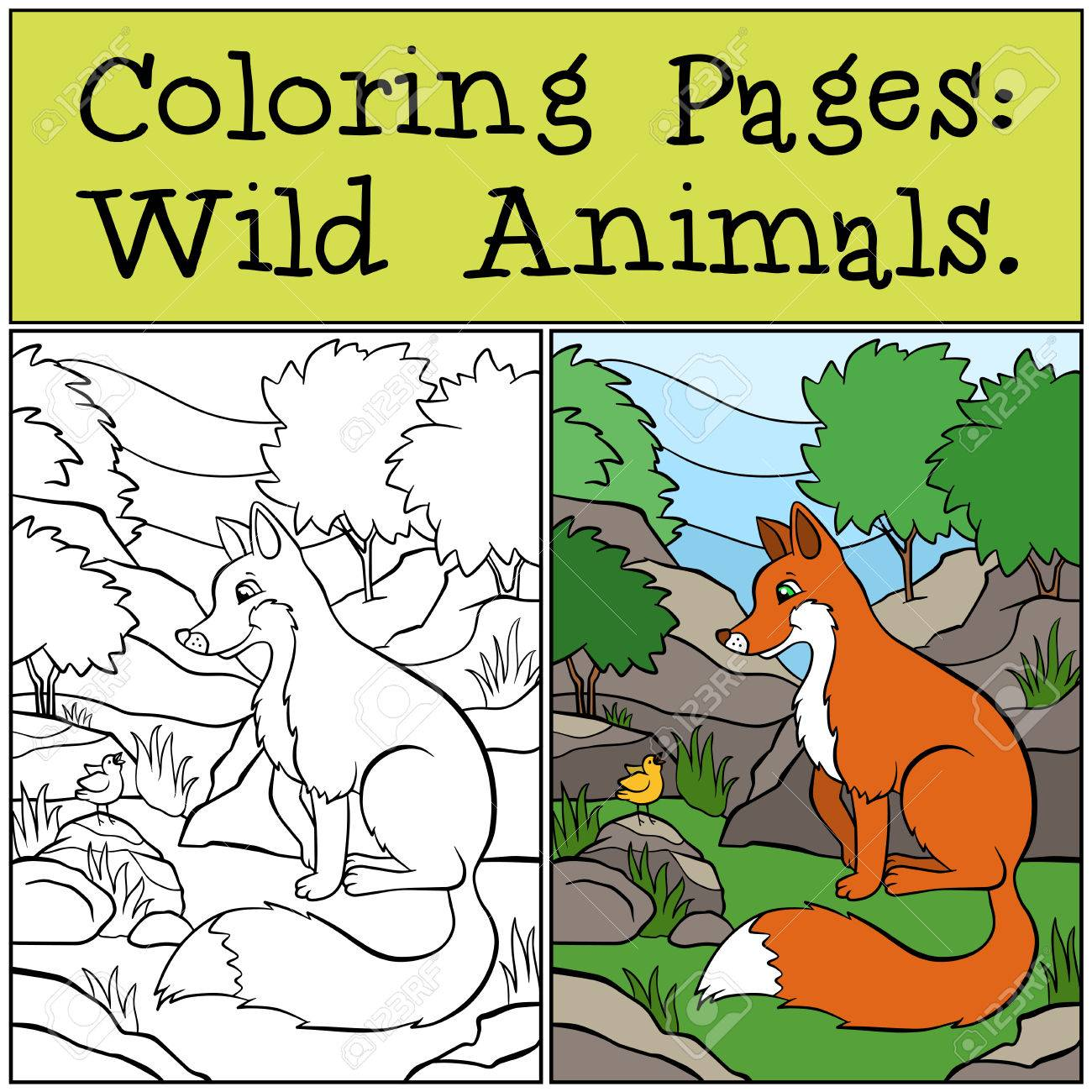 Coloring Pages: Wild Animals. Little Cute Fox Sits And Looks ...