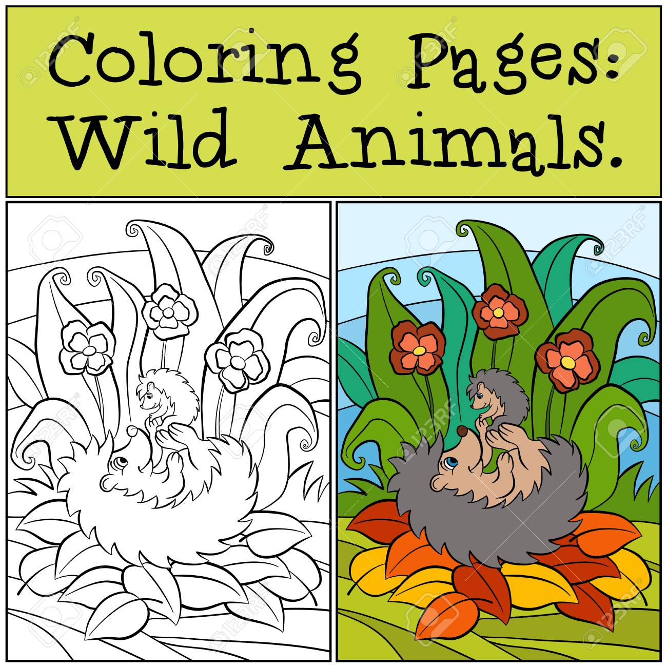 Coloring Pages: Wild Animals. Mother Hedgehog Holds Little Cute ...