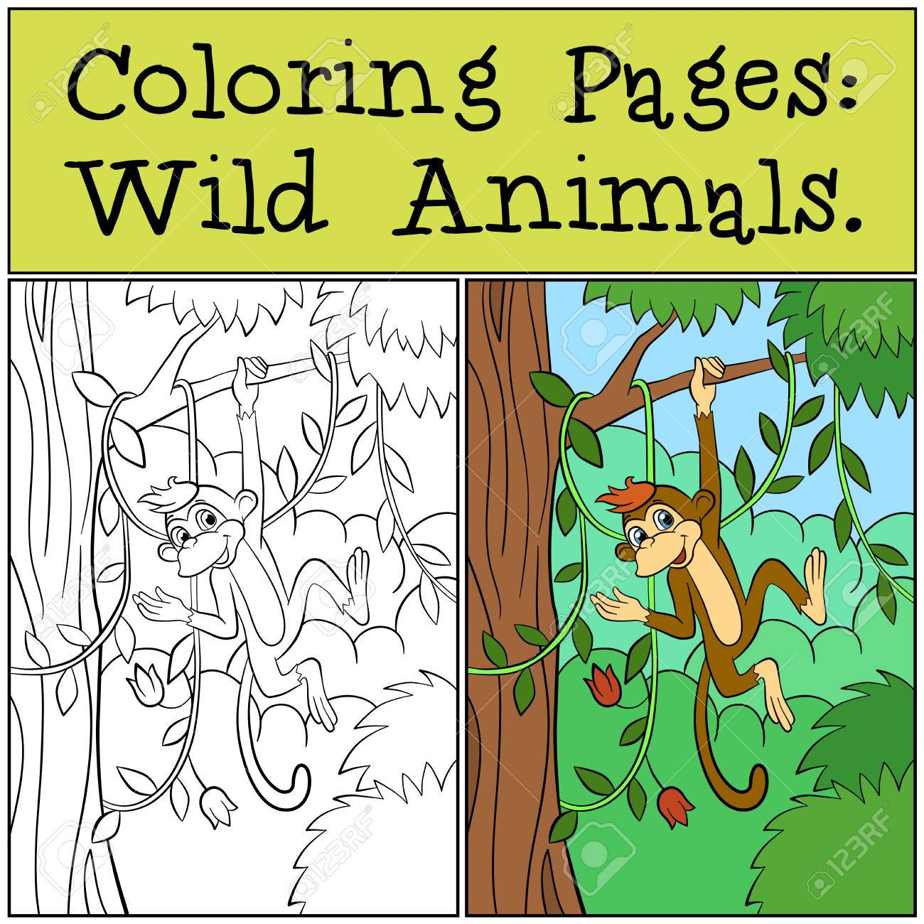 Coloring Pages: Wild Animals. Little Cute Monkey Hangs On The ...