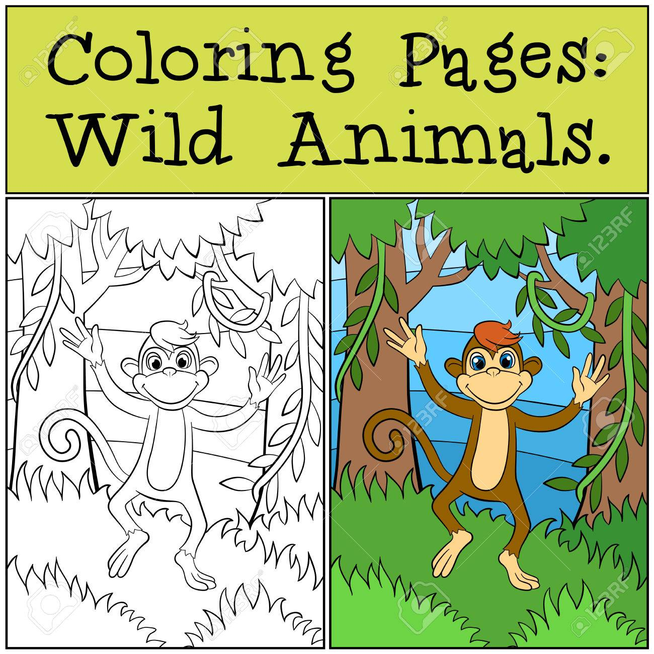 Coloring Pages Wild Animals Little Cute Monkey Runs And Smiles Stock Vector