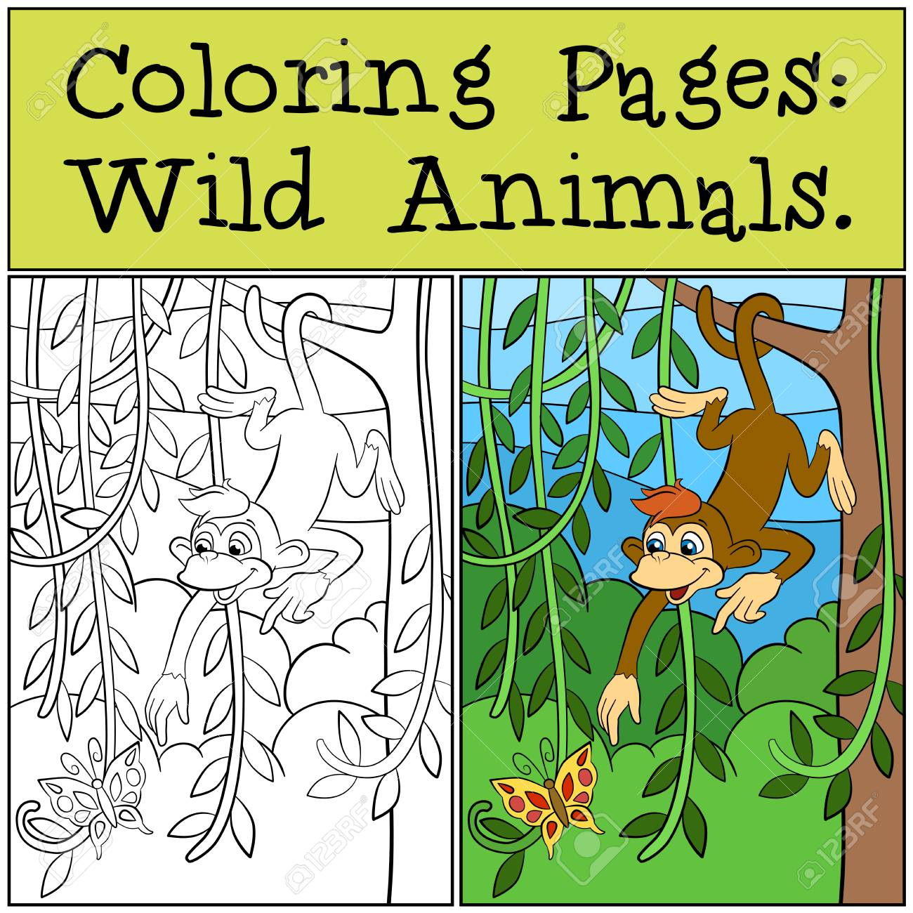 Coloring Pages Wild Animals Little Cute Monkey Looks At The Butterfly Stock Vector