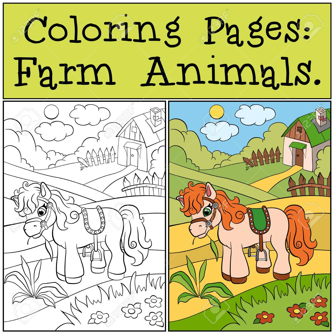 Coloring Pages Farm Animals Little Cute Pony Eats Grass On The Field Stock