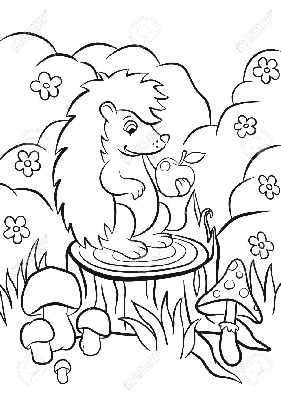 Malvorlagen. Kleine nette Art Igel sitzt auf dem Stumpf und hält einen  Apfel in der Pfote. Es gibt Sträucher, Blumen, Gras und Pilze herum. Sommer.