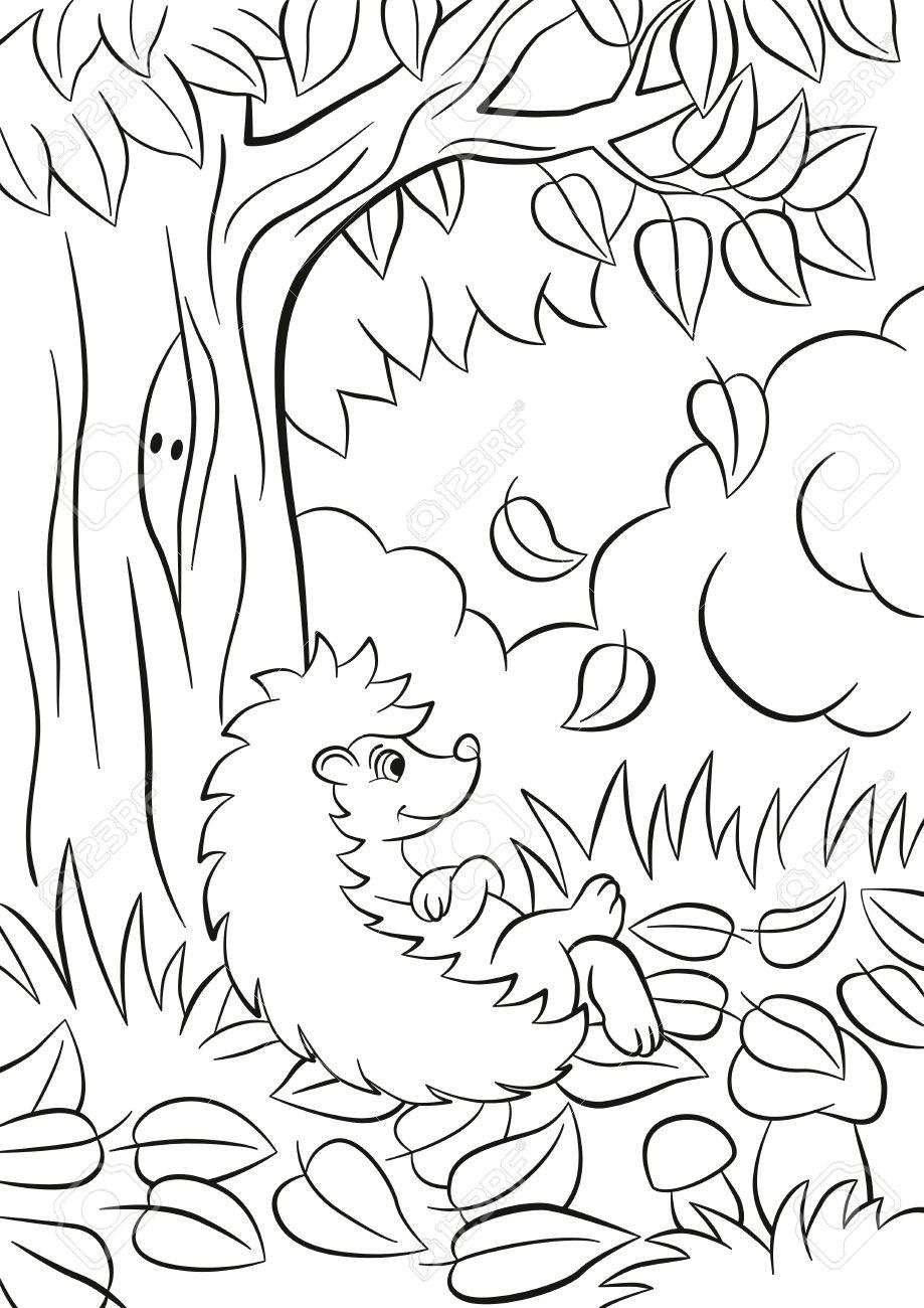 Páginas Para Colorear Pequeño Erizo Tipo Lindo Se Sienta Cerca Del árbol Es Otoño Las Hojas Caen Del árbol Hay Arbustos Plantas Hierbas Y Setas