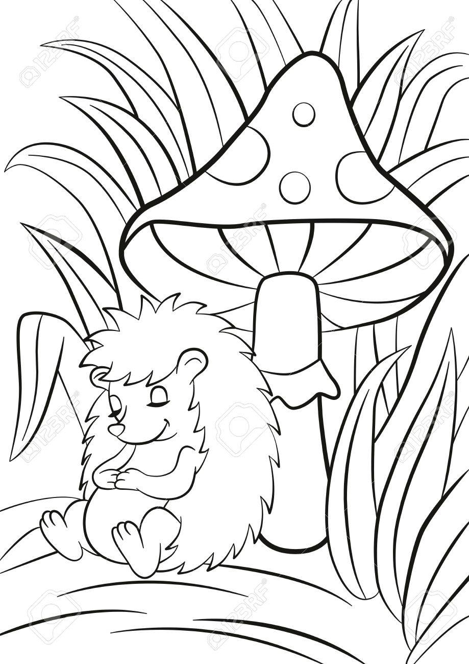coloring pages : Big Butterfly Coloring Pages Fresh Coloring Pages ...   1300x919