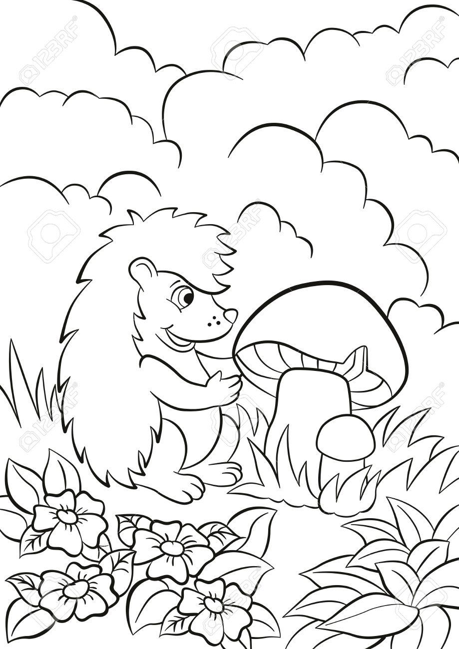 Páginas Para Colorear Cute Poco Erizo Ve El Hongo Grande Hay Arbustos Hierba Plantas Y Flores Alrededor El Erizo Es Feliz