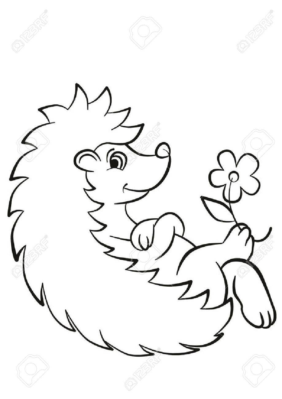 Coloring Pages Little Cute Hedgehog Lays And Smiles There Are