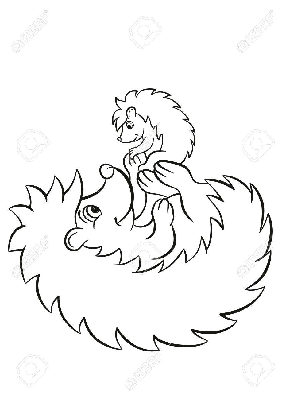 Coloring Pages The Hedgegoh Holds Little Cute Hedgehog Baby