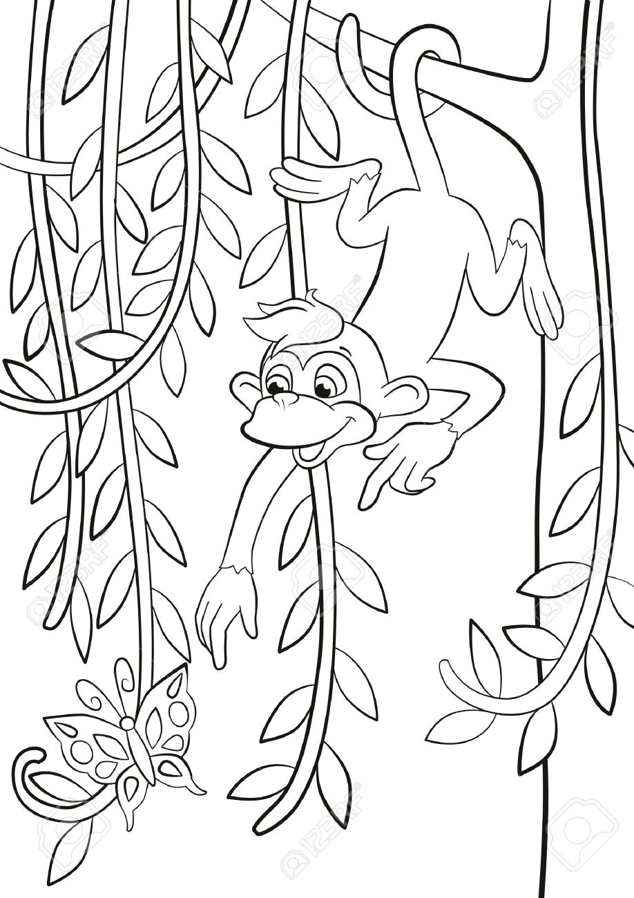 Coloring Pages. Little Cute Monkey Is Hanging On The Tree Branch ...