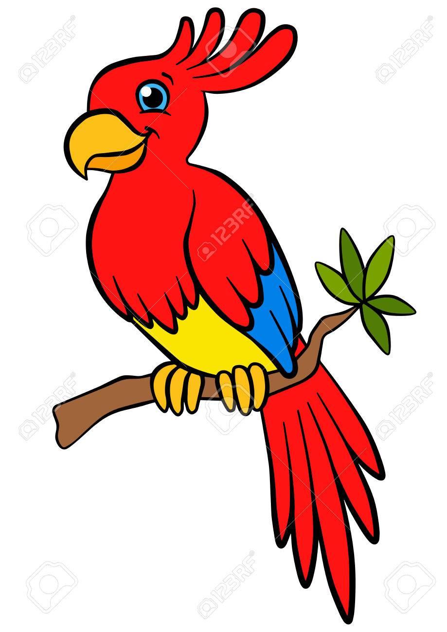 Oiseaux De Dessins Animes Pour Les Enfants Petit Perroquet Mignon