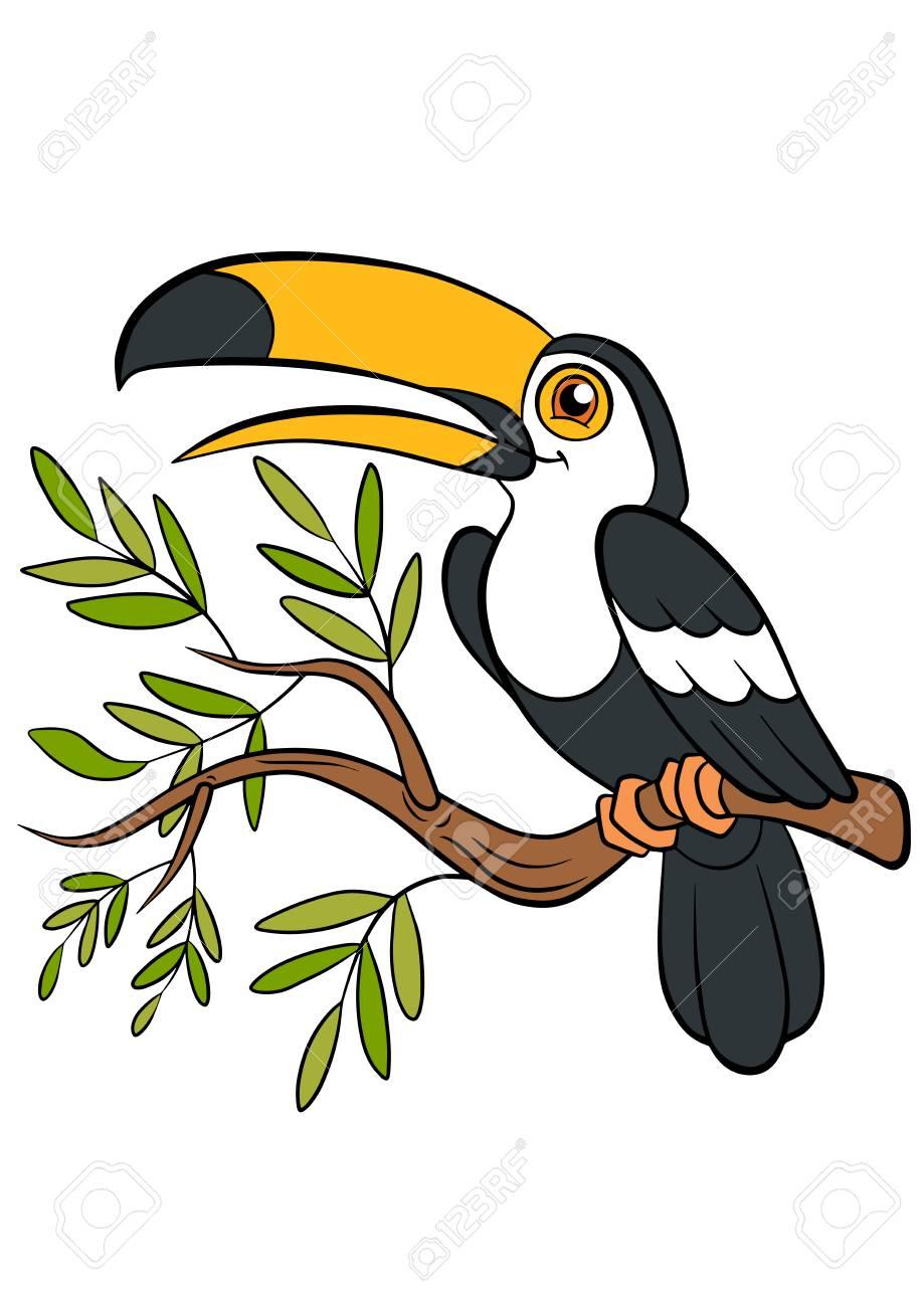 Oiseaux De Dessins Animes Pour Les Enfants Petit Toucan Mignon