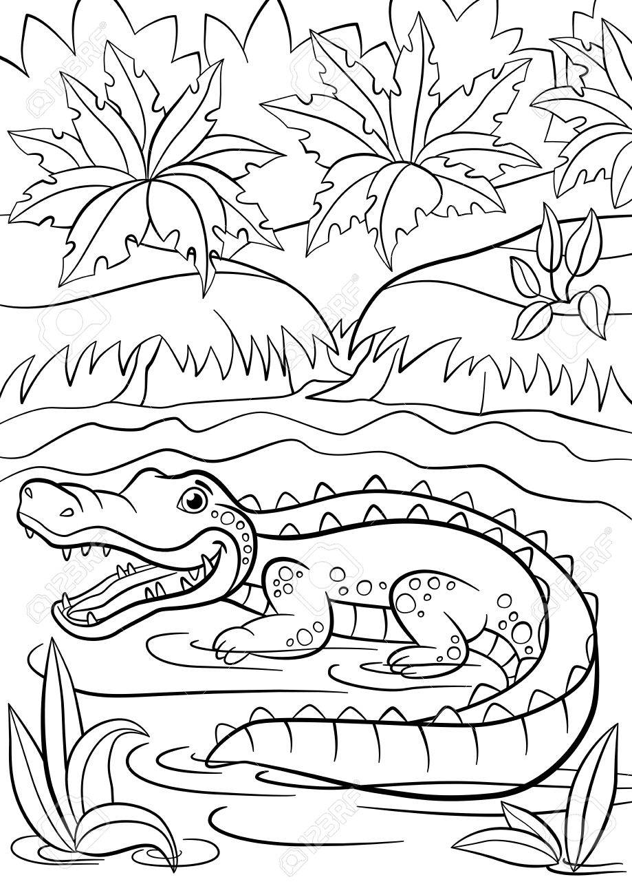 900 Lake Animals Coloring Pages  Images