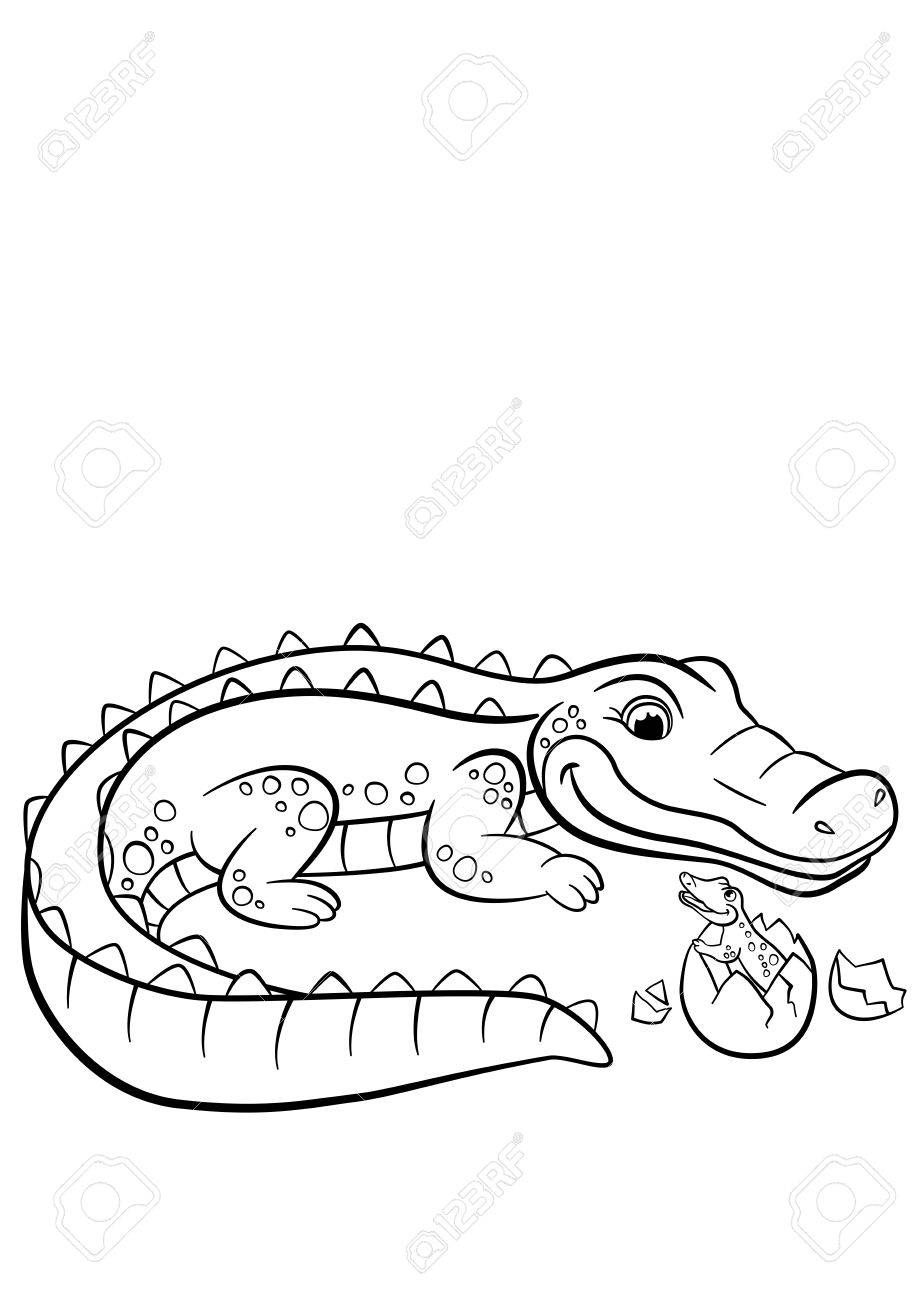 Coloring Pages Animals Mother Alligator Looks At Her Little