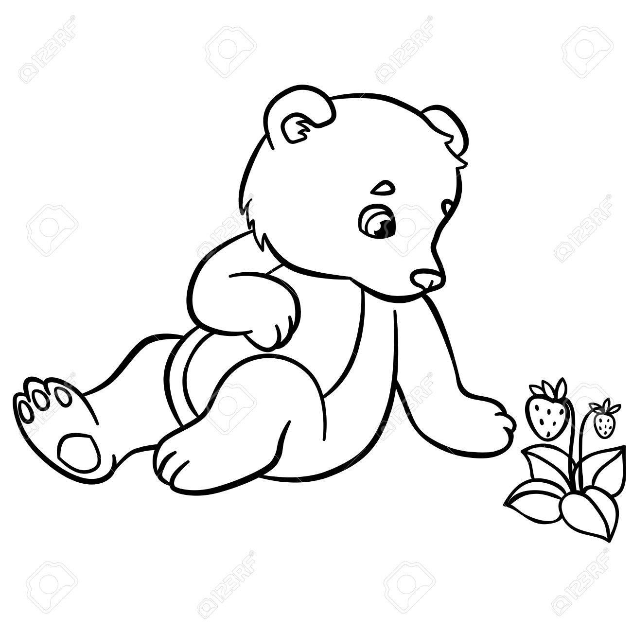 Malvorlagen Wilde Tiere Kleine Süße Baby Bär Schaut Auf Die