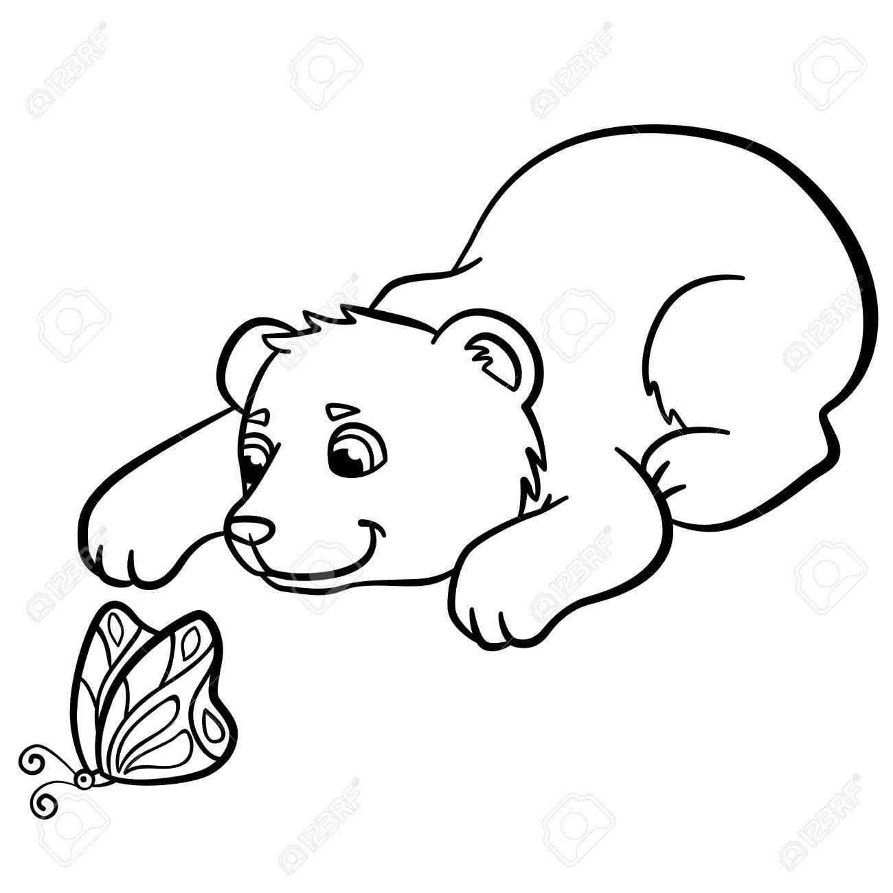 Malvorlagen Wilde Tiere Kleine Süße Baby Bär Schaut Auf Den