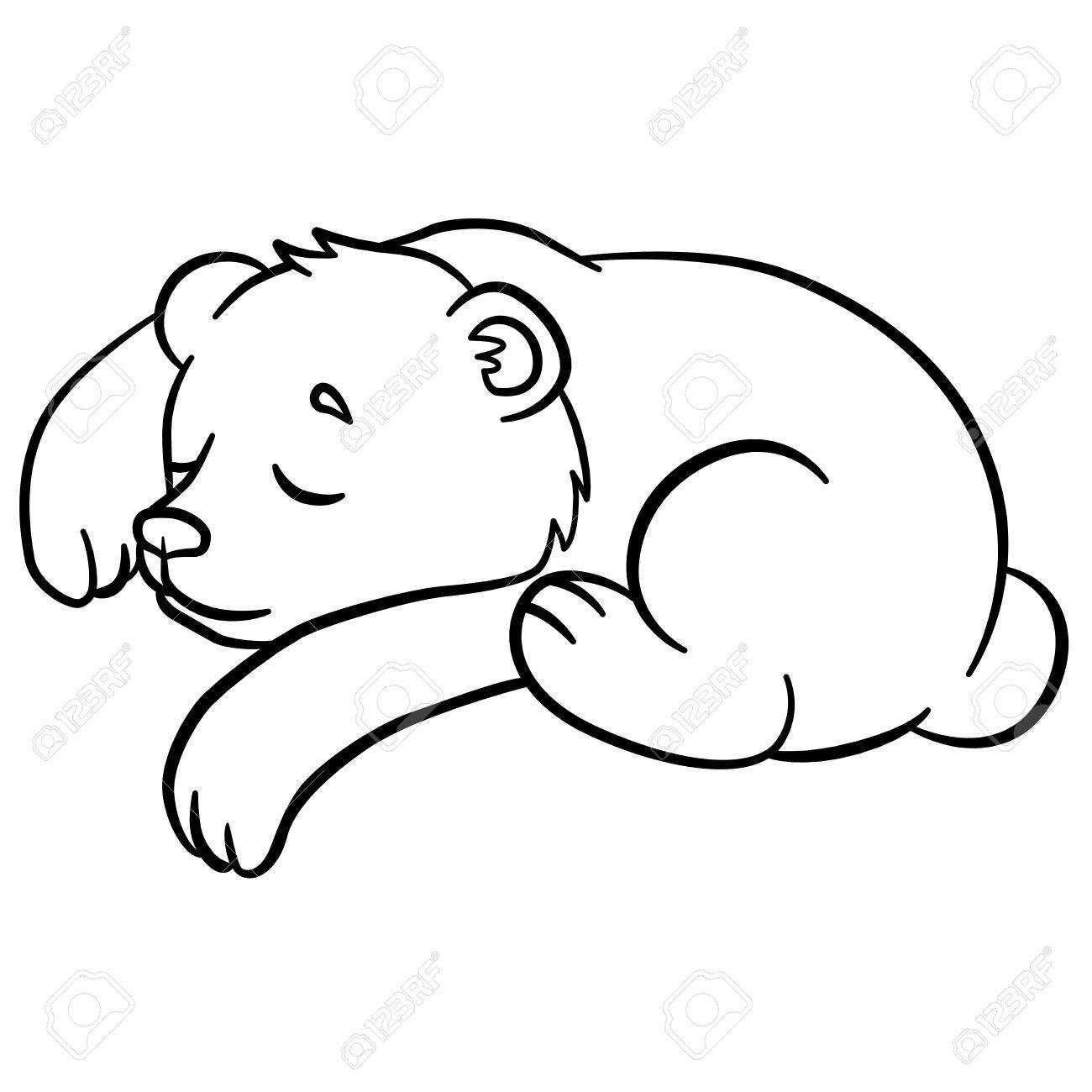 Coloring Pages. Wild Animals. Little Cute Baby Bear Sleeps. It ...