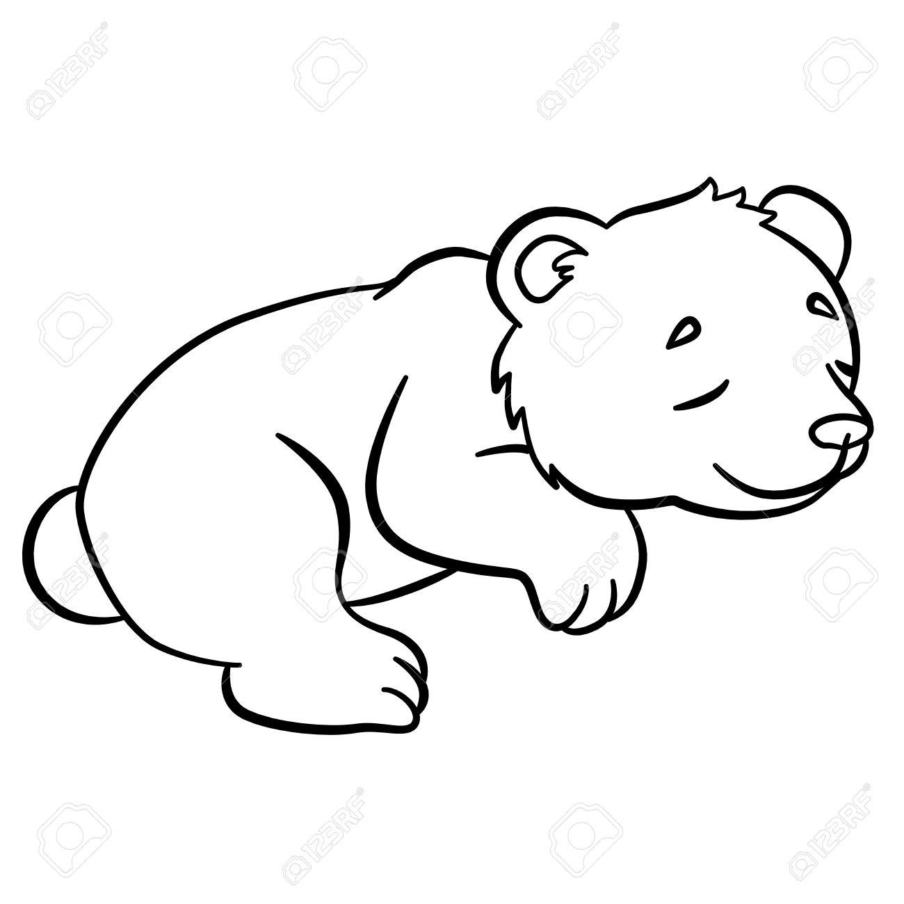 Páginas Para Colorear. Animales Salvajes. Pequeño Oso Lindo Bebé ...
