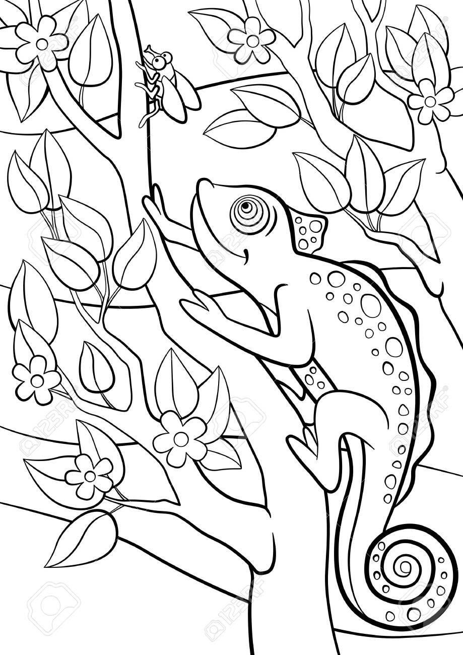 Coloring Pages Wild Animals Little Cute Chameleon Sits On The Tree Branch And Looks