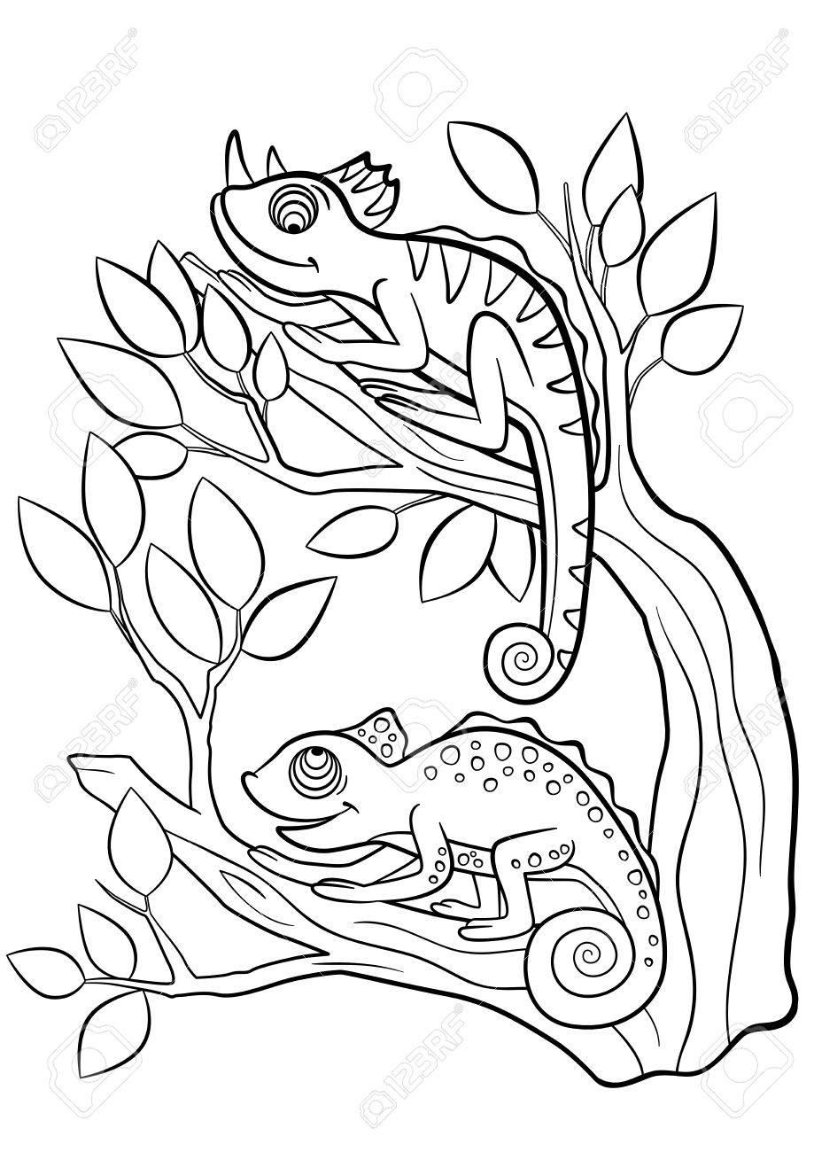 Malvorlagen Wilde Tiere Zwei Kleine Niedliche Chamaleon Sitzt Auf Dem Ast Lizenzfrei Nutzbare Vektorgrafiken Clip Arts Illustrationen Image 57627304
