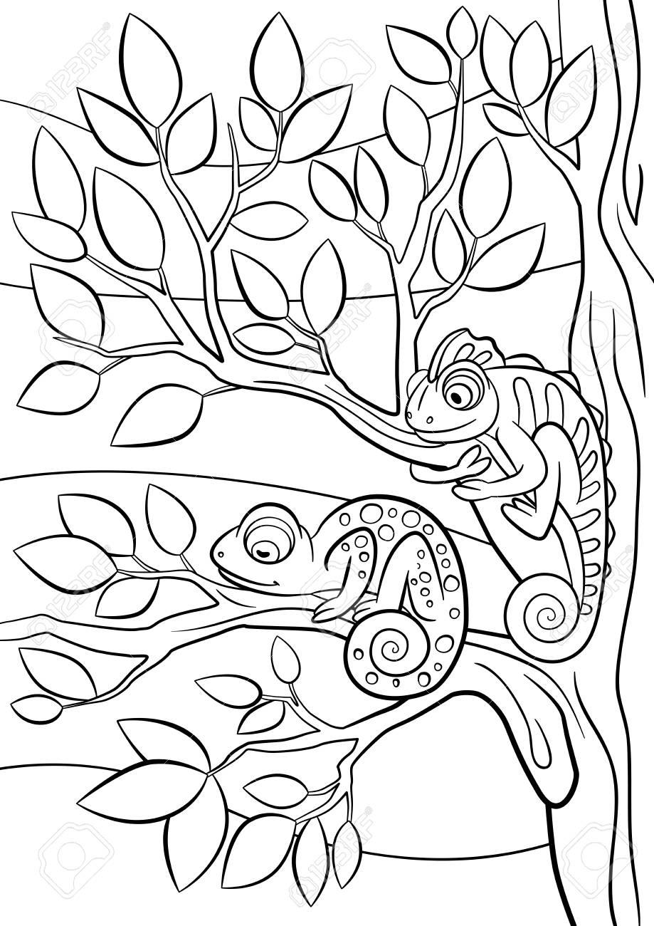 Páginas Para Colorear. Animales Salvajes. Dos Pequeños Camaleón ...