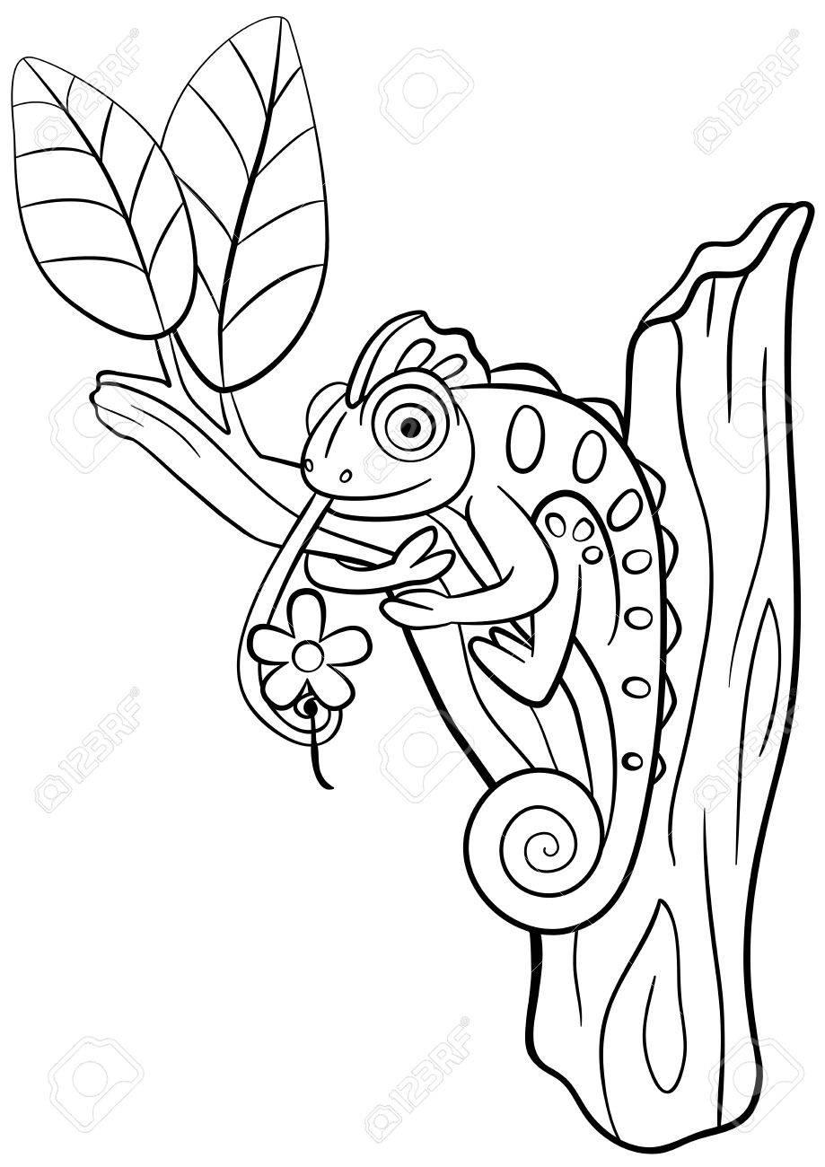 Coloriage Animaux Sauvages Petit Cameleon Mignon Est Assis Sur La Branche D Arbre Et De Sourires Clip Art Libres De Droits Vecteurs Et Illustration Image 57627315