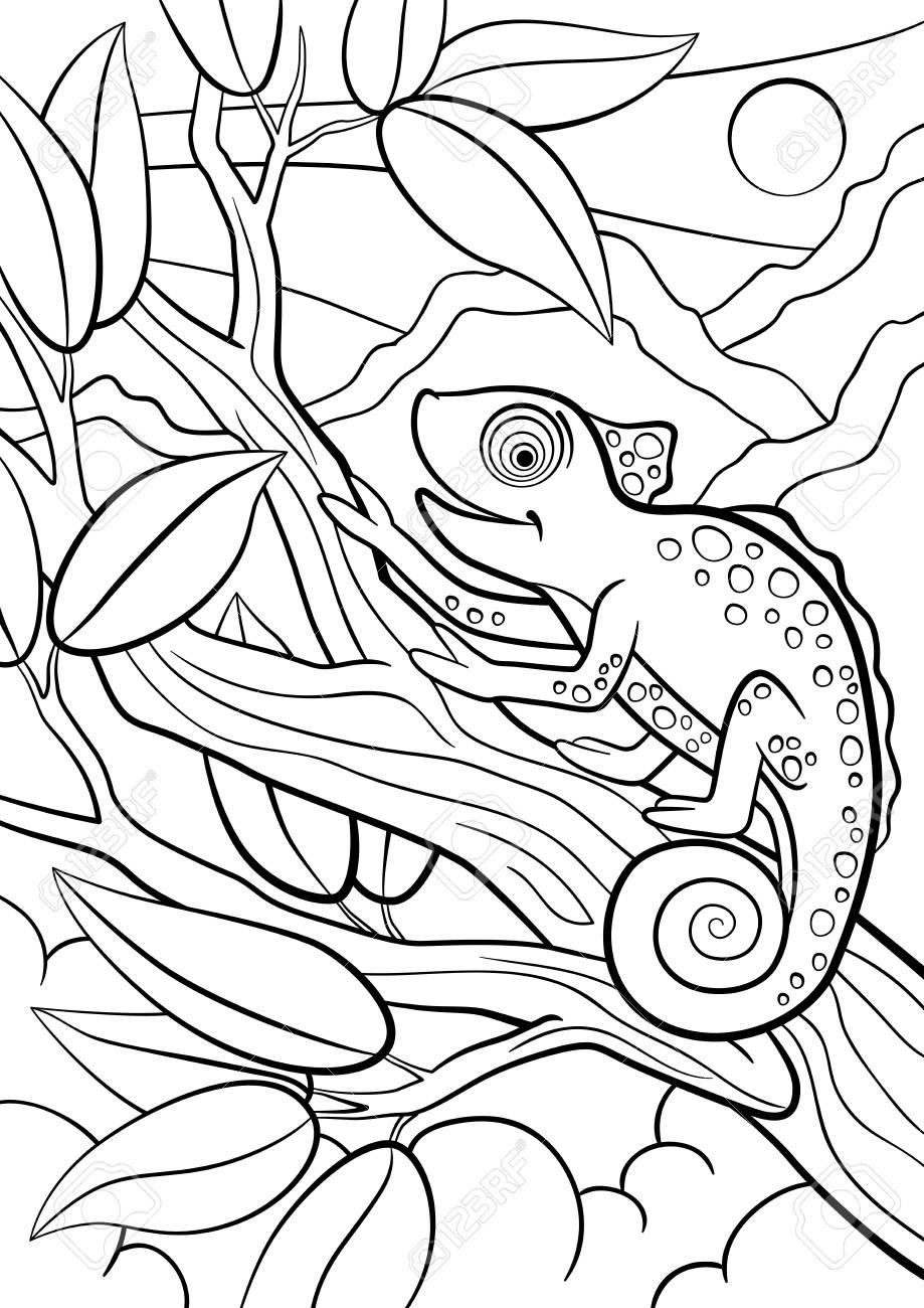 Malvorlagen Wilde Tiere Kleine Niedliche Chamaleon Sitzt Auf Dem Ast Und Lachelt Lizenzfrei Nutzbare Vektorgrafiken Clip Arts Illustrationen Image 57627316