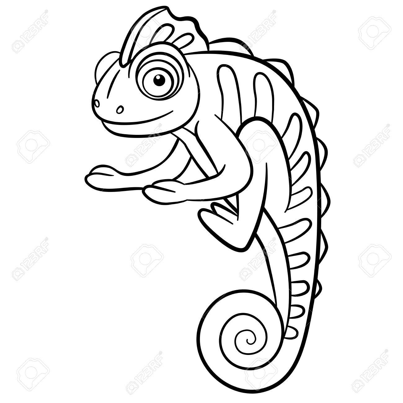 Coloring Pages Wild Animals Little Cute Chameleon Smiles Stock Vector