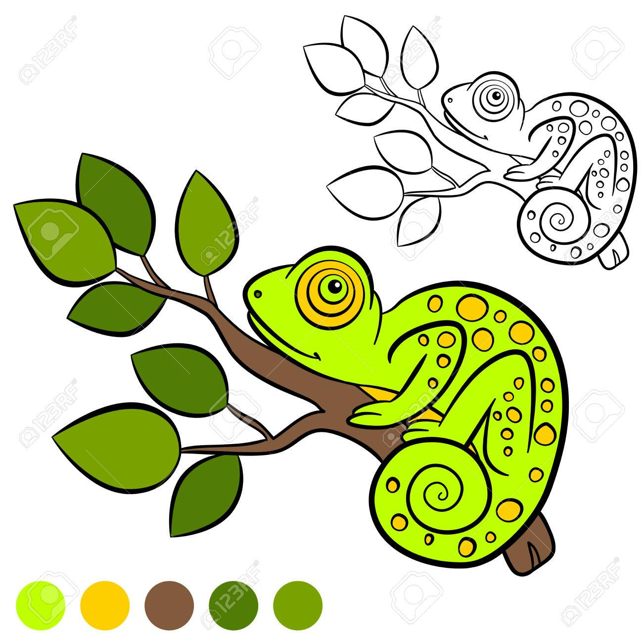 Coloring Page. Color Me: Chameleon. Little Cute Green Chameleon ...