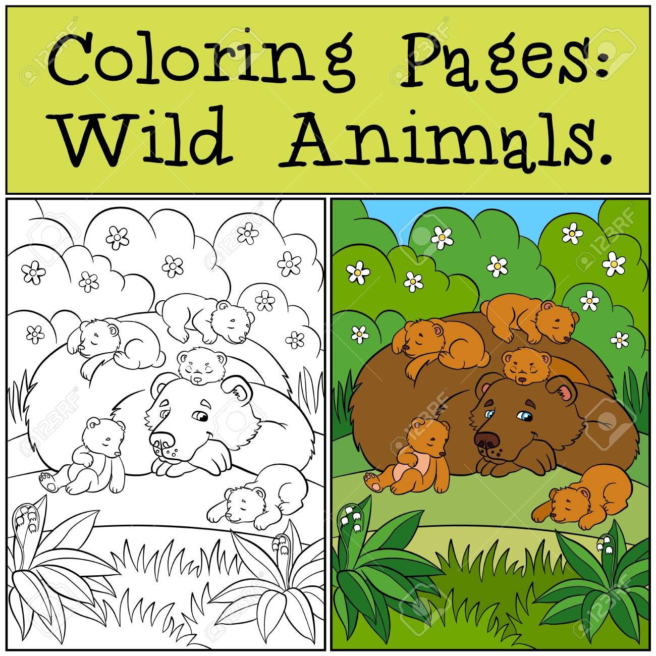 Coloring pages wild animals daddy bear with his little cute
