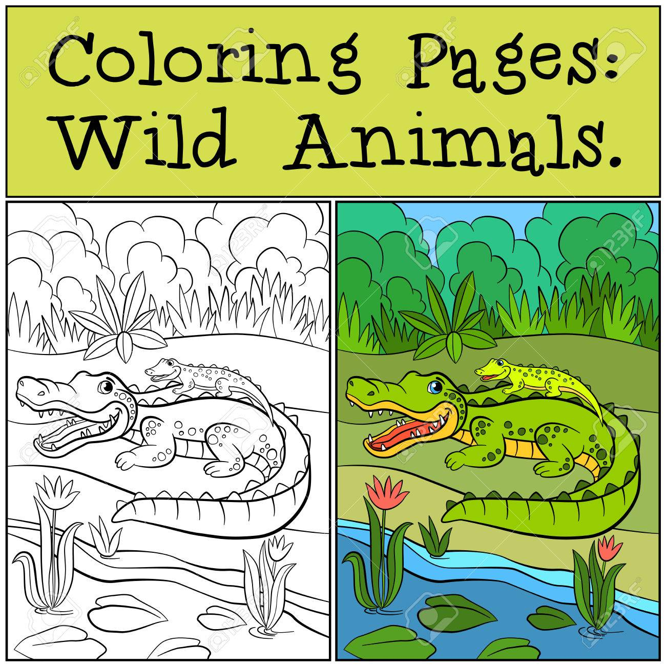 Coloring Pages: Wild Animals. Mother Alligator With Her Little ...