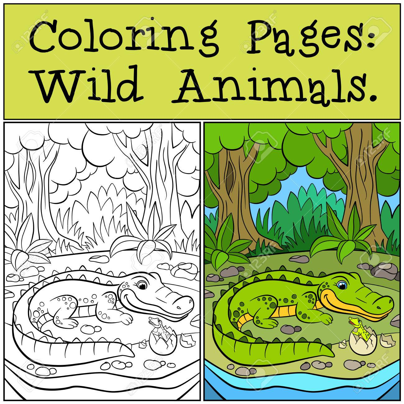 Coloring Pages: Wild Animals. Mother Alligator Looks At Her Little ...