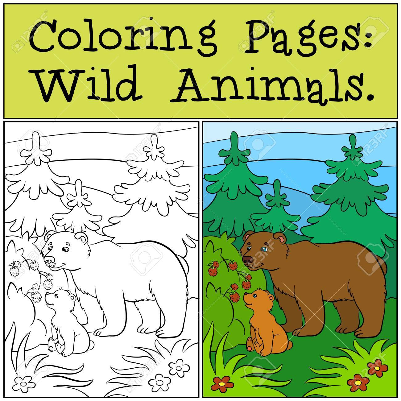 Coloring Pages: Wild Animals. Daddy Bear With His Little Cute ...