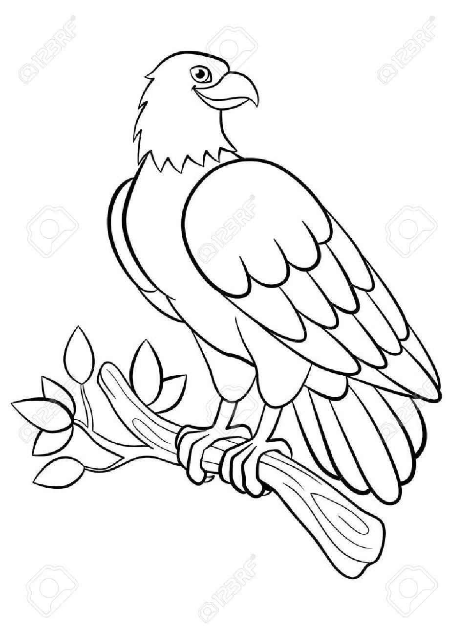 Páginas Para Colorear. Pájaros Salvajes. águila Sonriente Linda Se