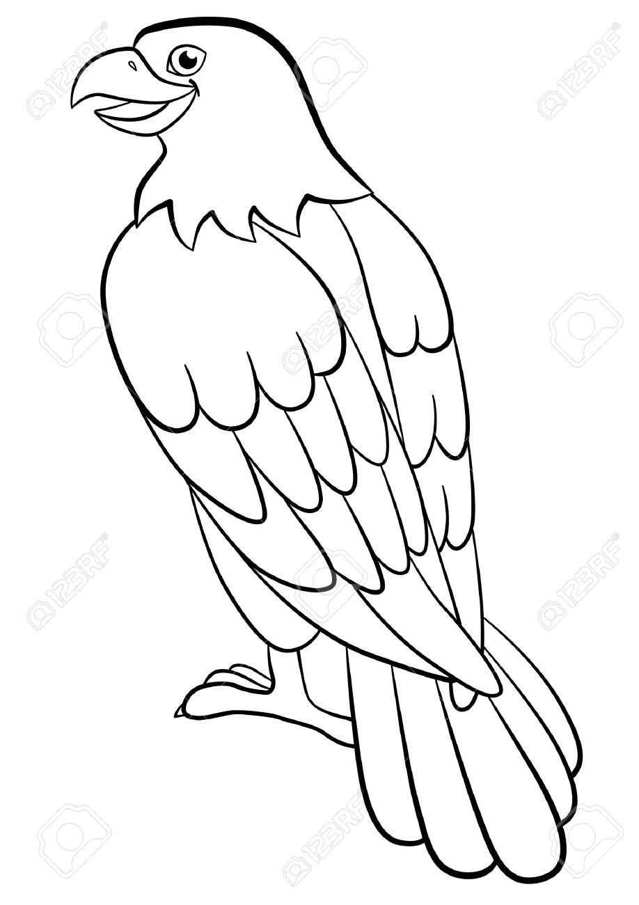 Páginas Para Colorear. Pájaros Salvajes. águila Lindo Se Sienta Y ...