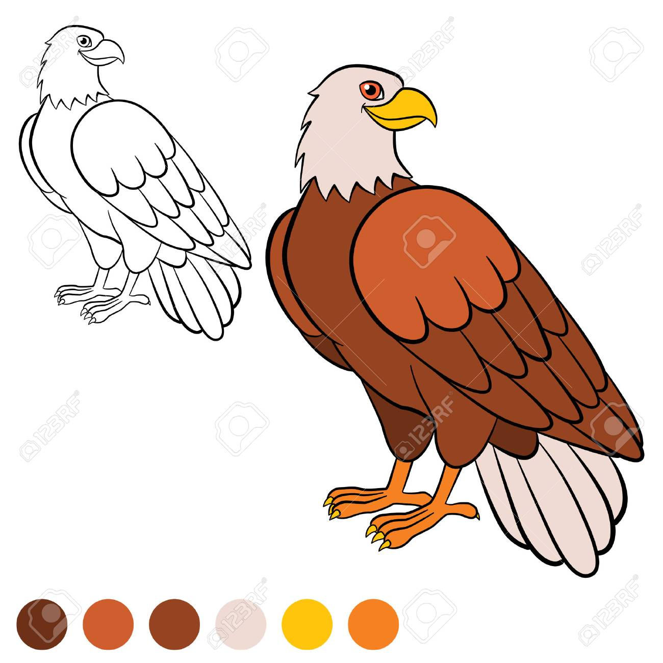 Coloring Page. Color Me: Eagle. Cute Bald Eagle Sits And Smiles ...