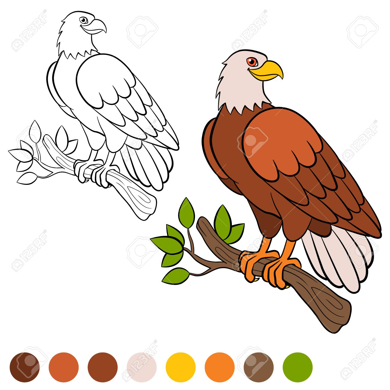 Coloring Page. Color Me: Eagle. Cute Bald Eagle Sits On The Tree ...