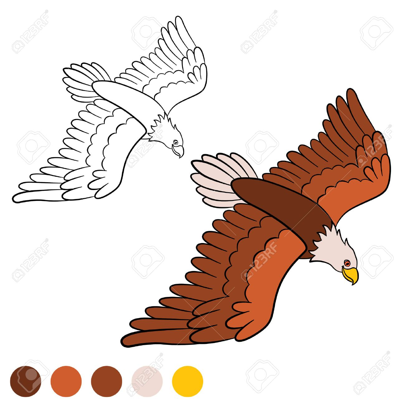 Coloring Page. Color Me: Eagle. Cute Bald Eagle Flying And Smiling ...
