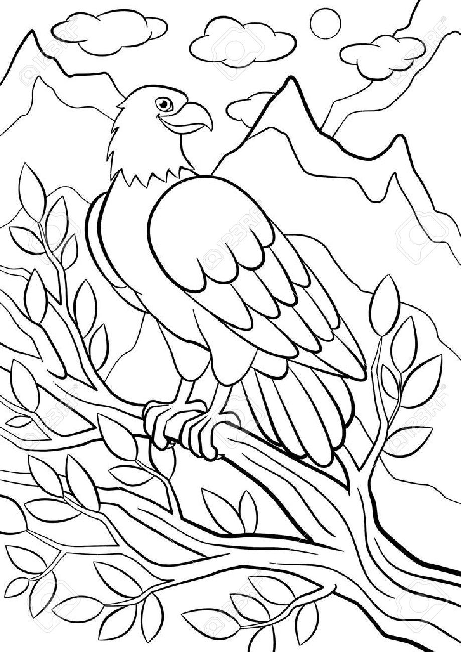 Malvorlagen Wilde Vögel Netter Adler Sitzt Auf Dem Ast Unter Den