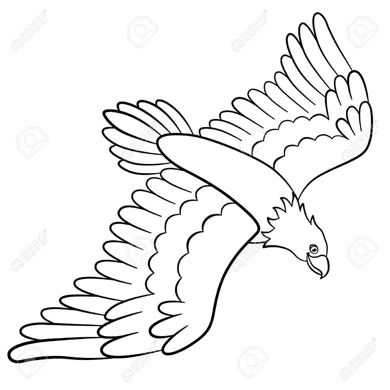 Malvorlagen. Wilde Vögel. Netter Adler Fliegt Und Lächelt ...