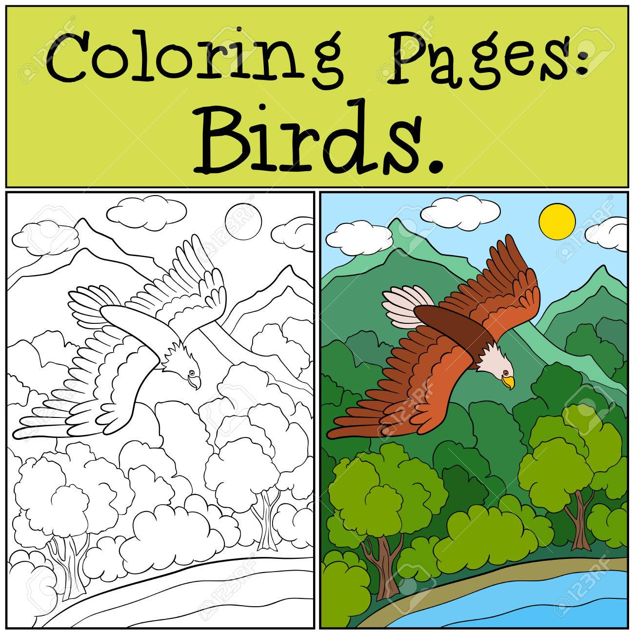 Coloring Pages: Wild Birds. Cute Bold Eagle Flying And Smiling ...