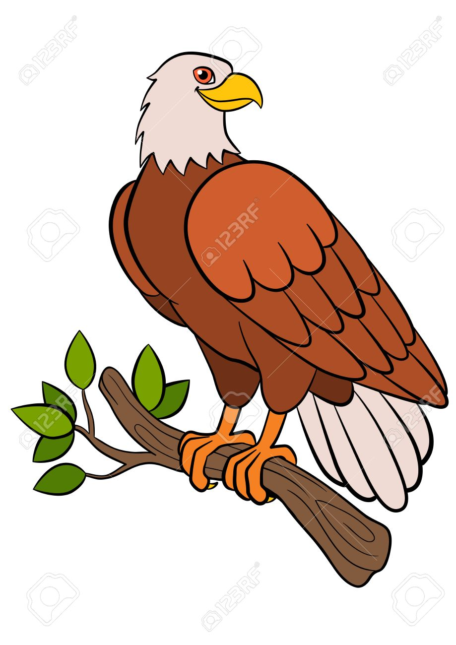 cartoon birds for kids eagle cute bald eagle sits on the tree
