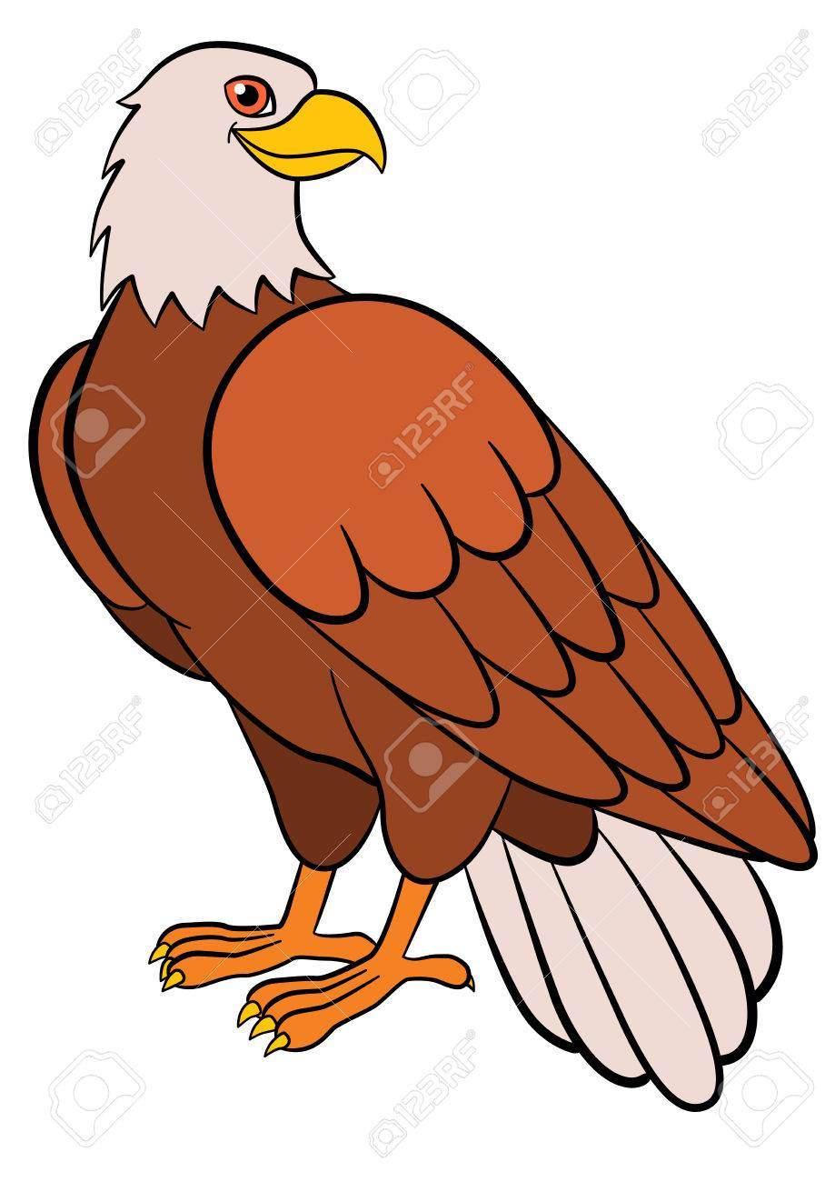 Cartoon Birds For Kids: Eagle. Cute Bald Eagle Smiles. Stock Vector    58544330