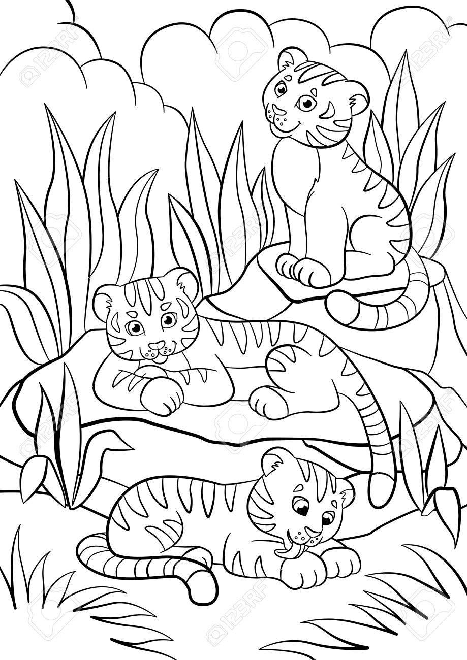 Páginas Para Colorear Animales Salvajes Tres Pequeños Tigres De Bebé Lindo En El Bosque