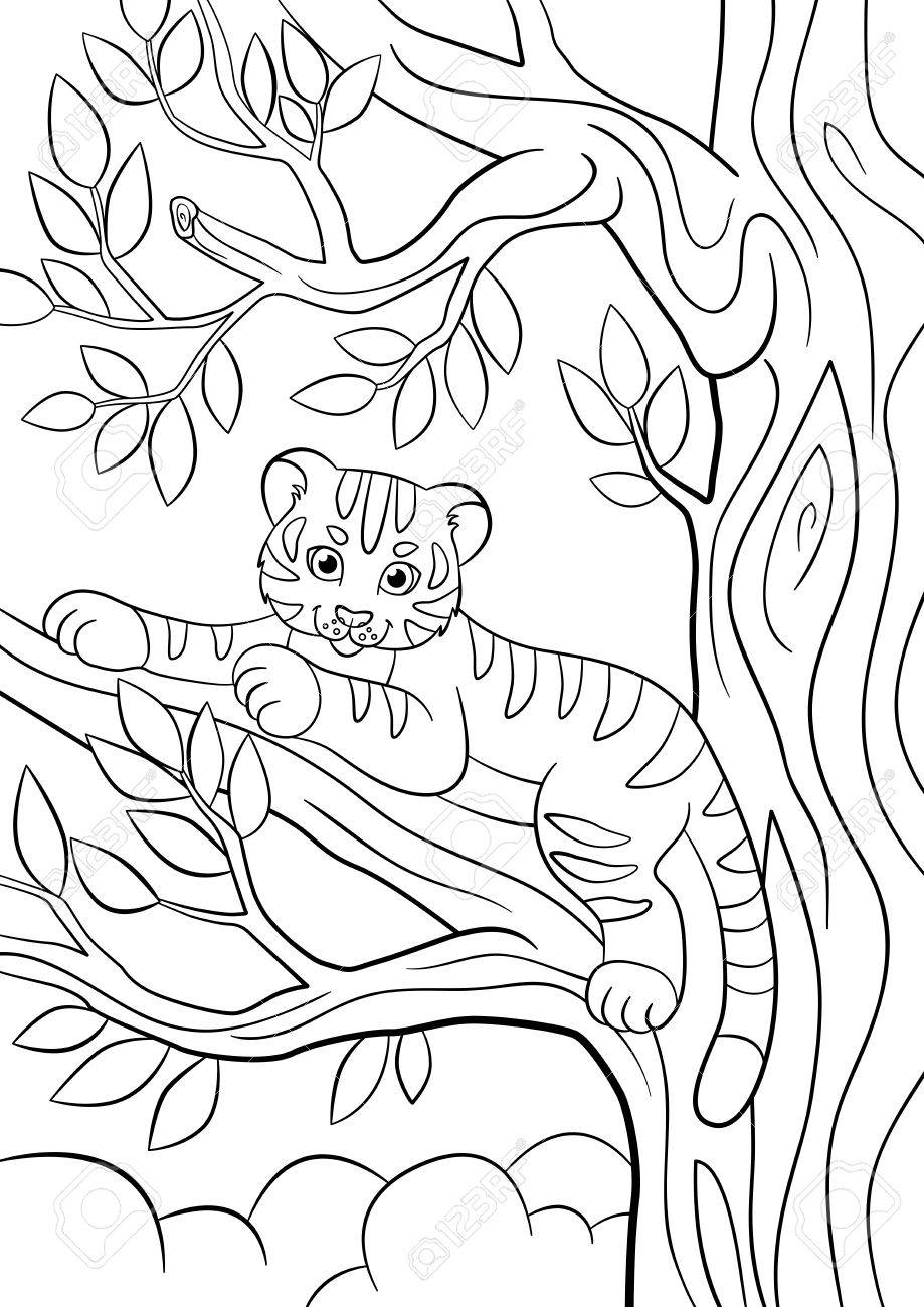 Malvorlagen. Wilde Tiere. Kleine Süße Baby-Tiger Liegt Auf Dem Baum ...