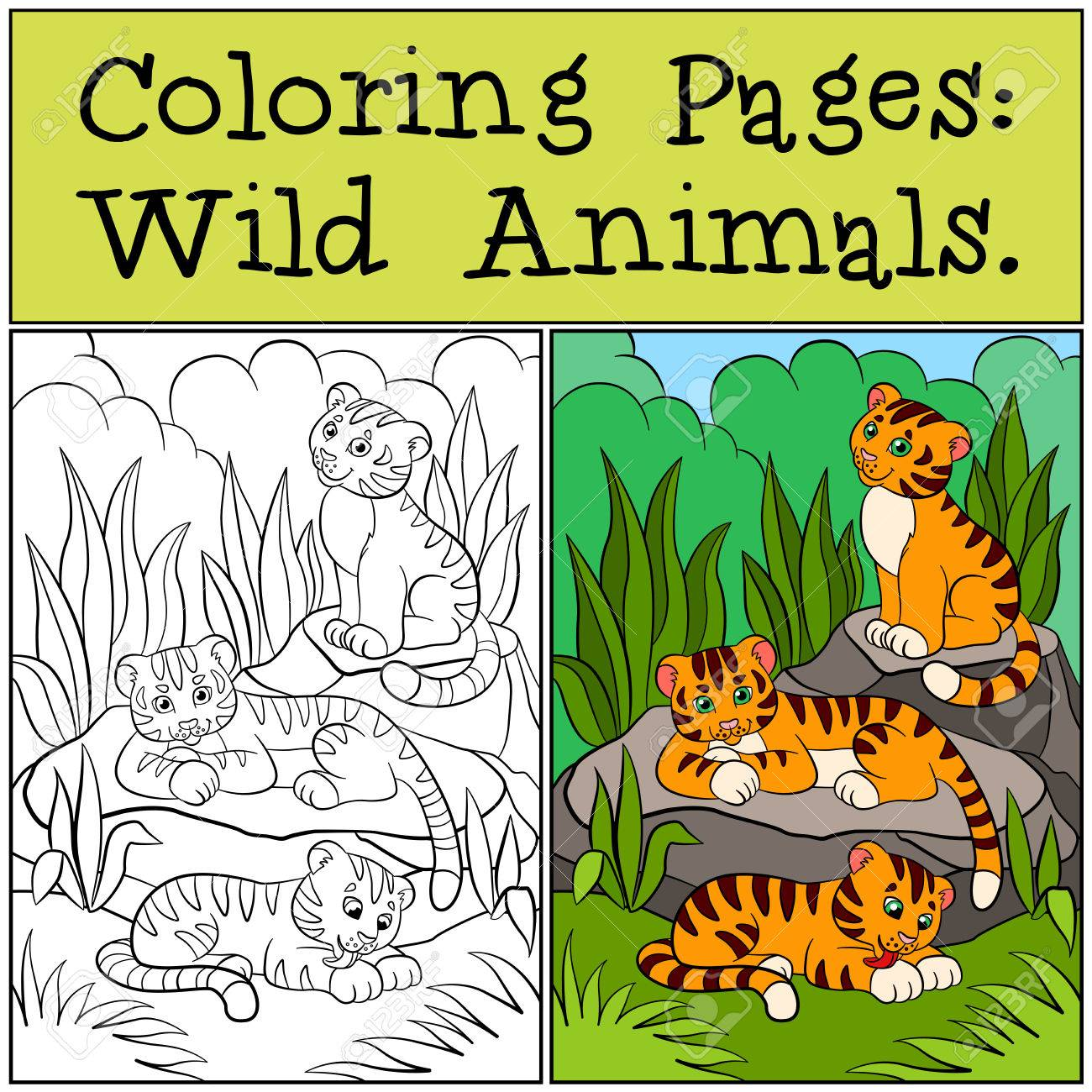 Coloring Pages: Wild Animals. Little Cute Baby Tigers Smiles ...