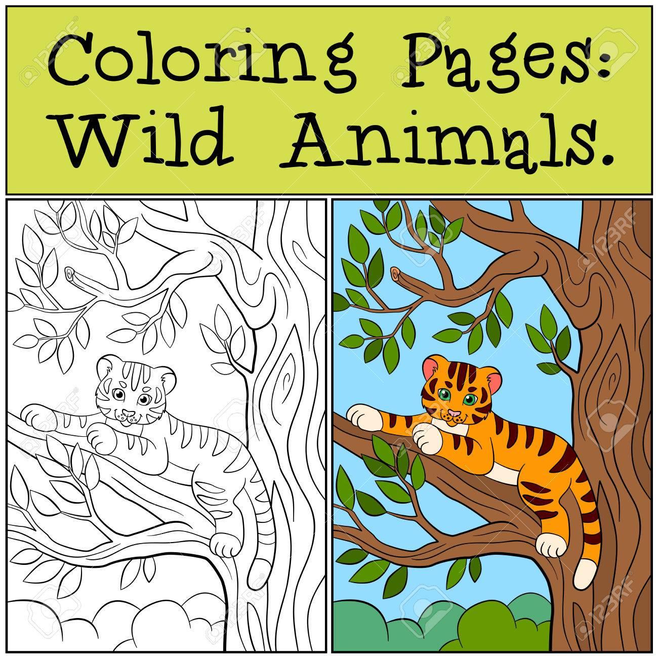 Malvorlagen: Wild Animals. Kleine Süße Baby-Tiger Legt In Dem Baum ...