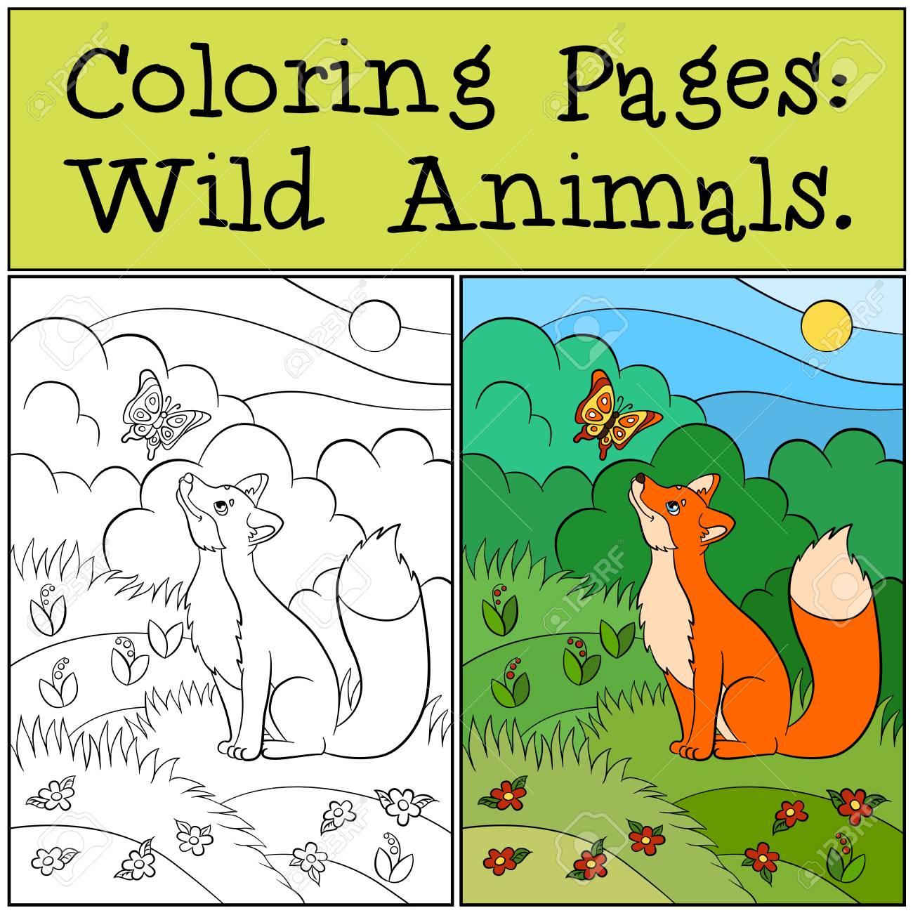 Páginas Para Colorear: Animales Salvajes. Lindo Zorro Se Sienta Y ...