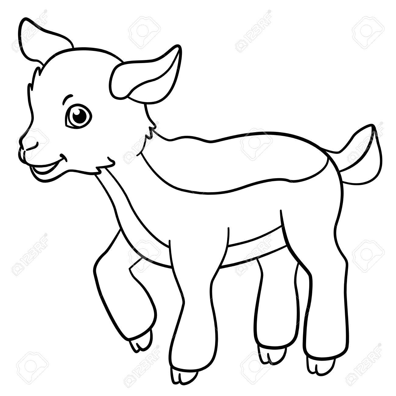 Coloring Pages Farm Animals Little Cute Goatling Stands And Smiles Stock Vector