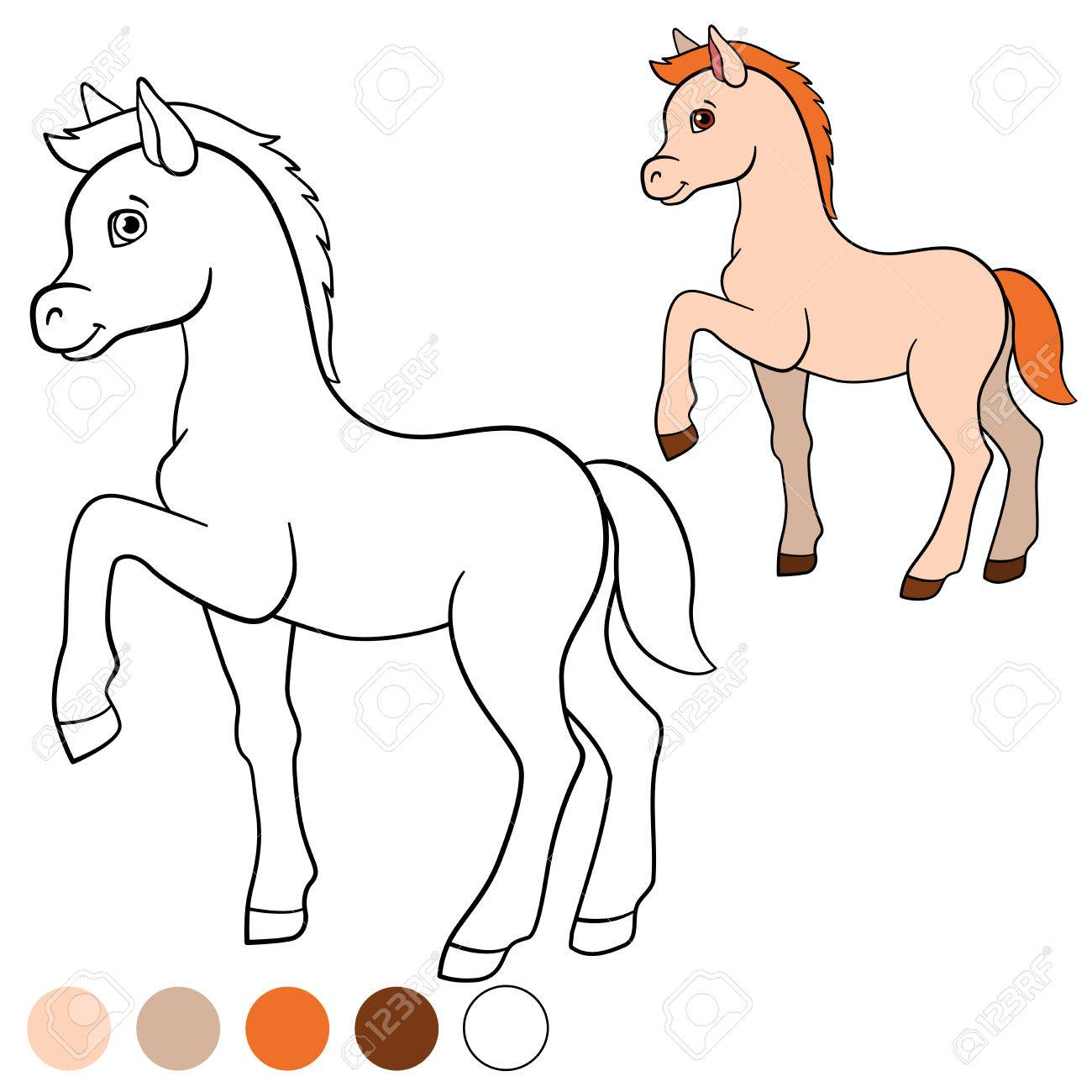 Coloring Page Color Me Horse Little Cute Foal Walks And Smiles Stock