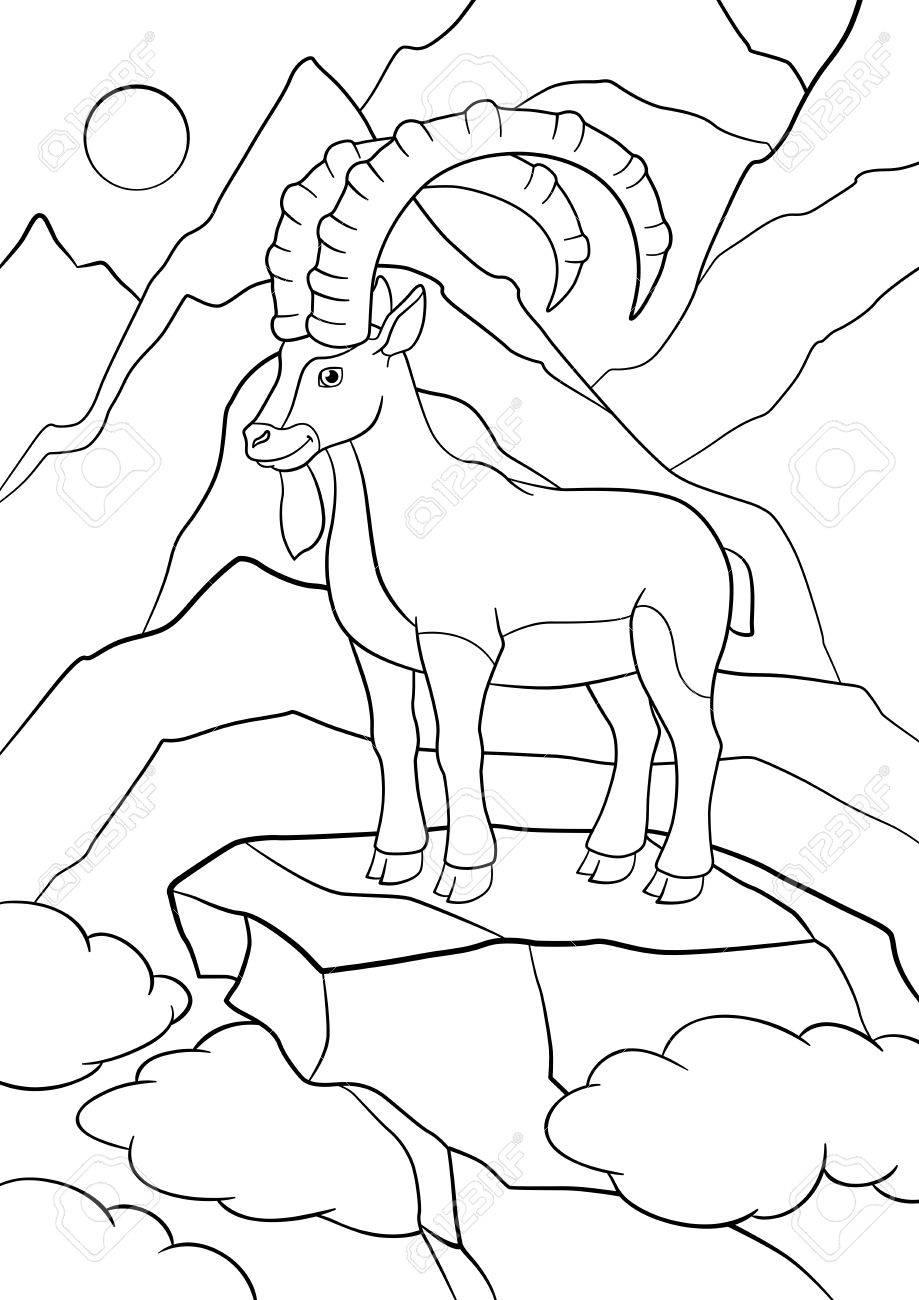 Páginas Para Colorear Ibex Linda Con Grandes Cuernos Se Coloca En La Roca Y Sonrisas